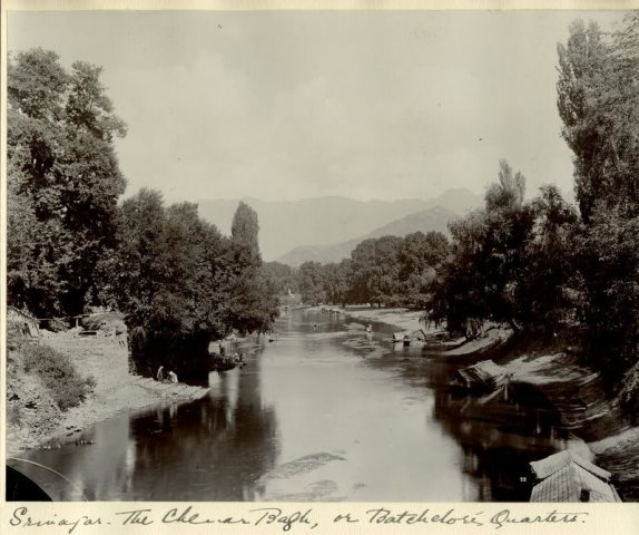 c.1900 PHOTO INDIA SRINAGAR CHENAR BAGH web
